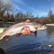 January Fishing Report…